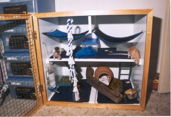 pet rat cages homemade. Black Bedroom Furniture Sets. Home Design Ideas