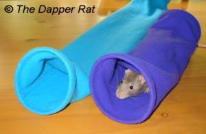 Сделать своими руками игрушку для крысы